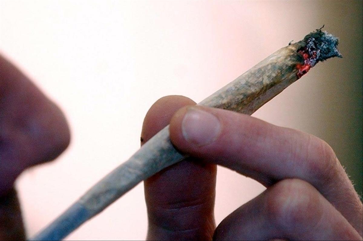 Cannabisabgabe